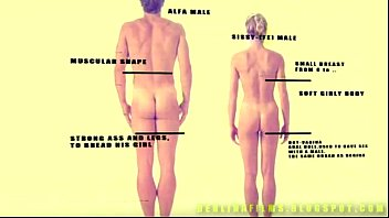 shemale anatomy