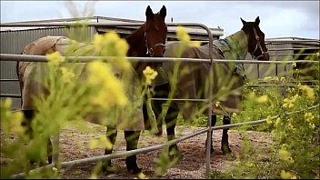 Lovely Horses Girl
