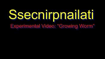 Ssecnirpnailati Experimental Video: Growing Worm