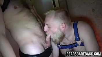 Two perverted bears suck off each other before barebacking