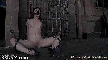 Pic pussy wild Sm pics