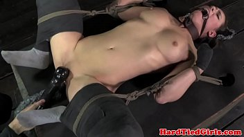 Kitten and adult cat Bdsm sub casey calvert clit stimulated