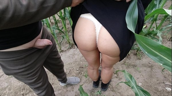 risky public nature fuck in a cornfield - projectfundiary