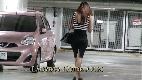 thai ladyboy pickup