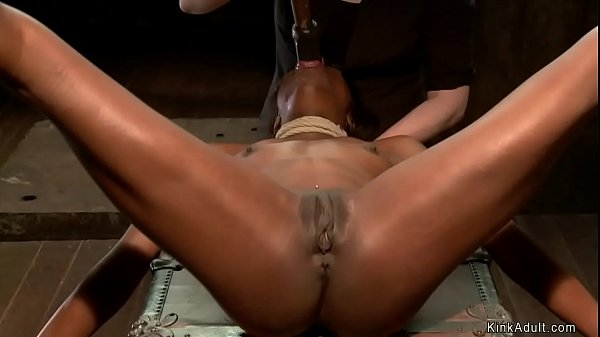 Ebony toyed in upside down position