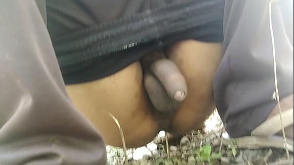 Cock Ass Showing
