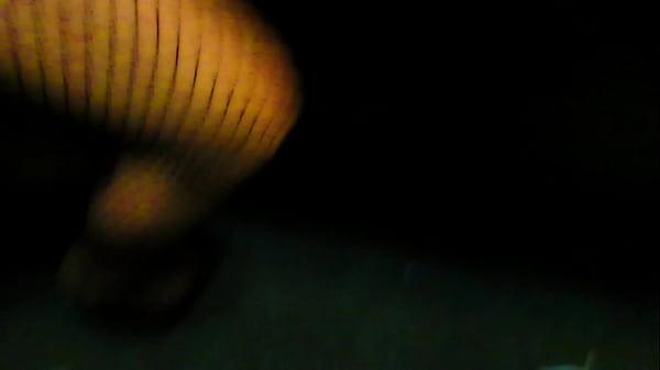 BIG BOOY PAWG AMATEUR LATINA PORNSTAR SUCKING IN TRAP HOUSE ALL DELETE SCENE.2