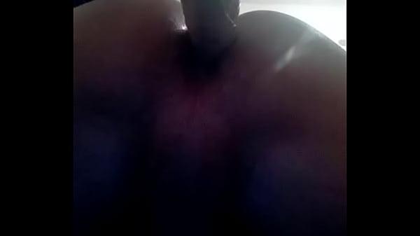 Рыжие воласатые пелотка