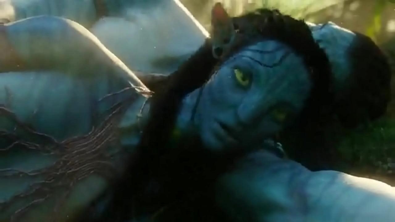 Avatar Porno Pelicula avatar movie sex - xvideos