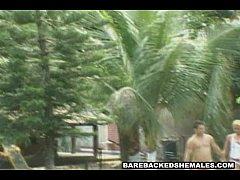 Hardcore Scene Of Nasty Shemale Loves Bareback