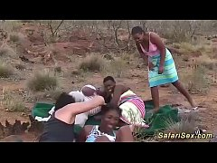real african safari groupsex orgy in nature