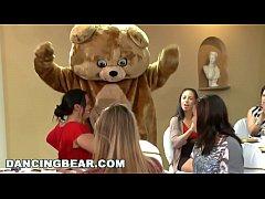 thumb dancing bear cf  nm party featuring big dick m ring big dick ma ing big dick ma