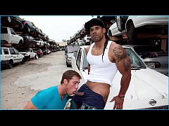 GAYWIRE - The Harder A Thug Looks, The Harder H...