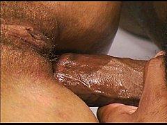 Midoris Flava - 2