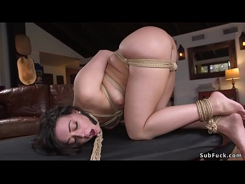 Your phrase bondage big dicks charming topic