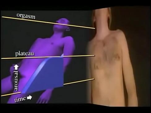 Характеристика мастурбации мужчины1