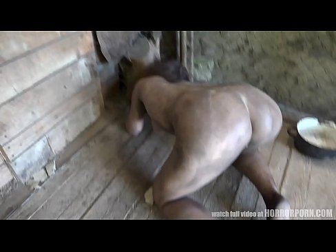 HORRORPORN – Wild Beast