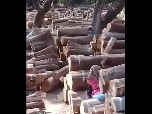 cover video anak smaba mesu  m