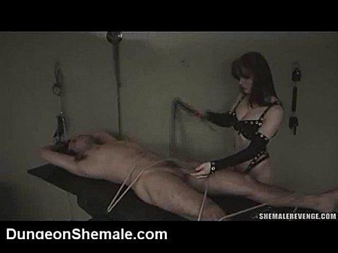 worship humiliation tube Shemale