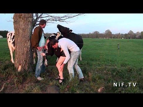 nif-mf200407-1-tube6 01 XXX Sex Videos