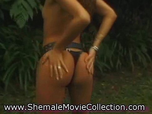 Transexual orgies movies