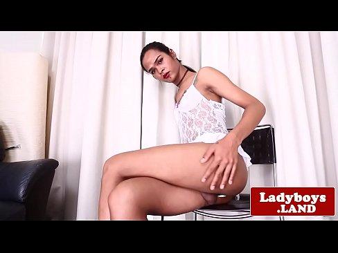 Beautiful tattooed ladyboy stokes her cock